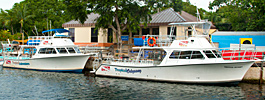 Our PADI IDC dive center in Key Largo photo