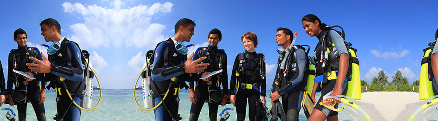 Image result for padi idc