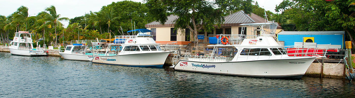 Our Dive Center in Key Largo Key Largo header image