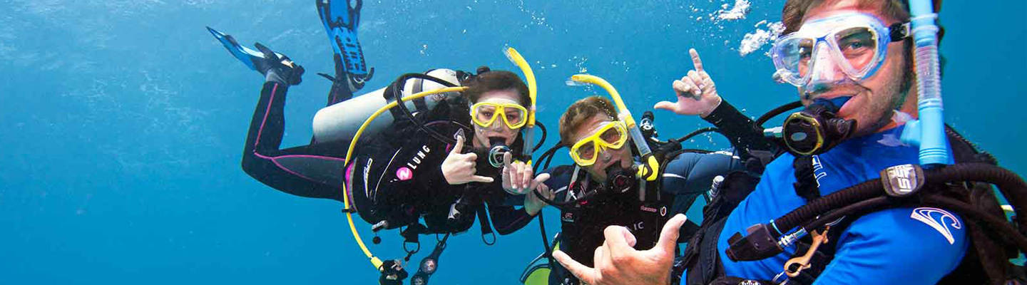 Dive Instructor Job Placement Key Largo header image